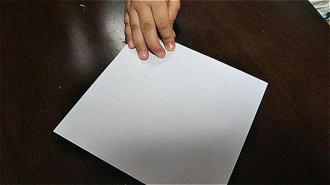 フラミンゴの折り紙 折り方・作り方 (1)