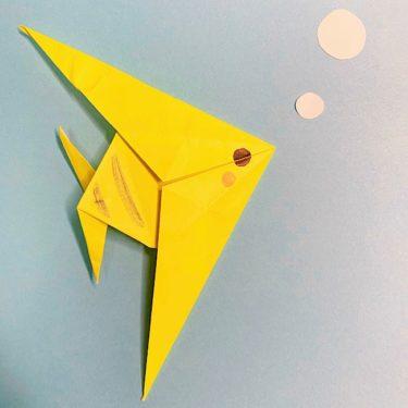 魚を折り紙でつくろう!簡単でかわいいエンゼルフィッシュの折り方