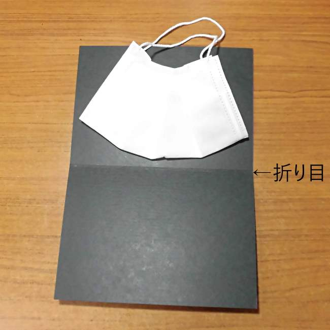 マスクケース(二つ折り)の作り方・縫い方 (1)