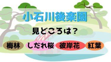 小石川後楽園の見どころは?紅葉やしだれ桜など子供とのお散歩にも最適!入場料やアクセス方法なども★