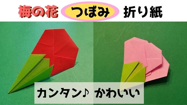 梅の花【つぼみ】折り紙の折り方・作り方★切らないで作れる簡単でかわいい飾り!