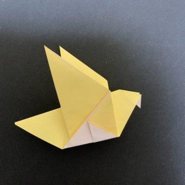 羽ばたく鳩の折り紙 簡単な折り方★幼児でもあっという間にできた作り方を紹介♪
