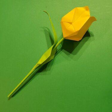 チューリップの折り紙 4歳児も作れる♪葉っぱ・茎(立体)の折り方★