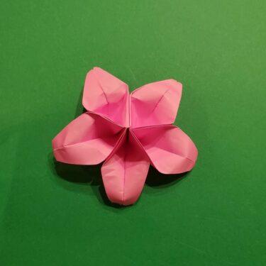 折り紙 桜(立体・1枚)の作り方折り方★少し難しい豪華な花に挑戦!